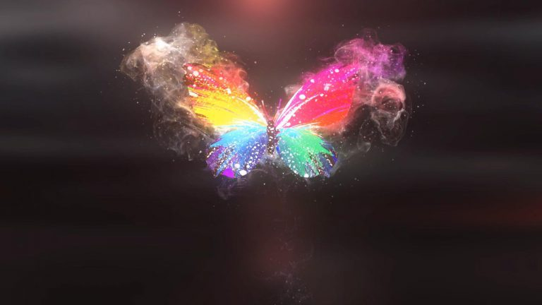 Butterfly Logo Animation Sample | Hire Logo Animator | Adobe After Effects